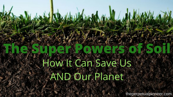 the-super-powers-of-soil